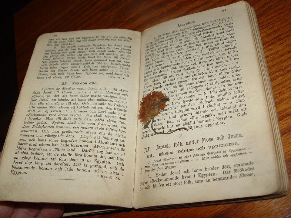 Swedish School Book Biblisk                                         historia för folkskolan Norstedt                                         1900