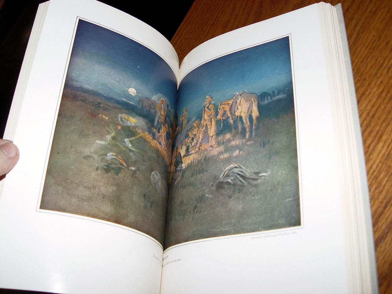 Trail Drive: A                                         True Narrative of Cowboy Life                                         from Andy Adams' Log of a Cowboy                                         by Glen Rounds 1965