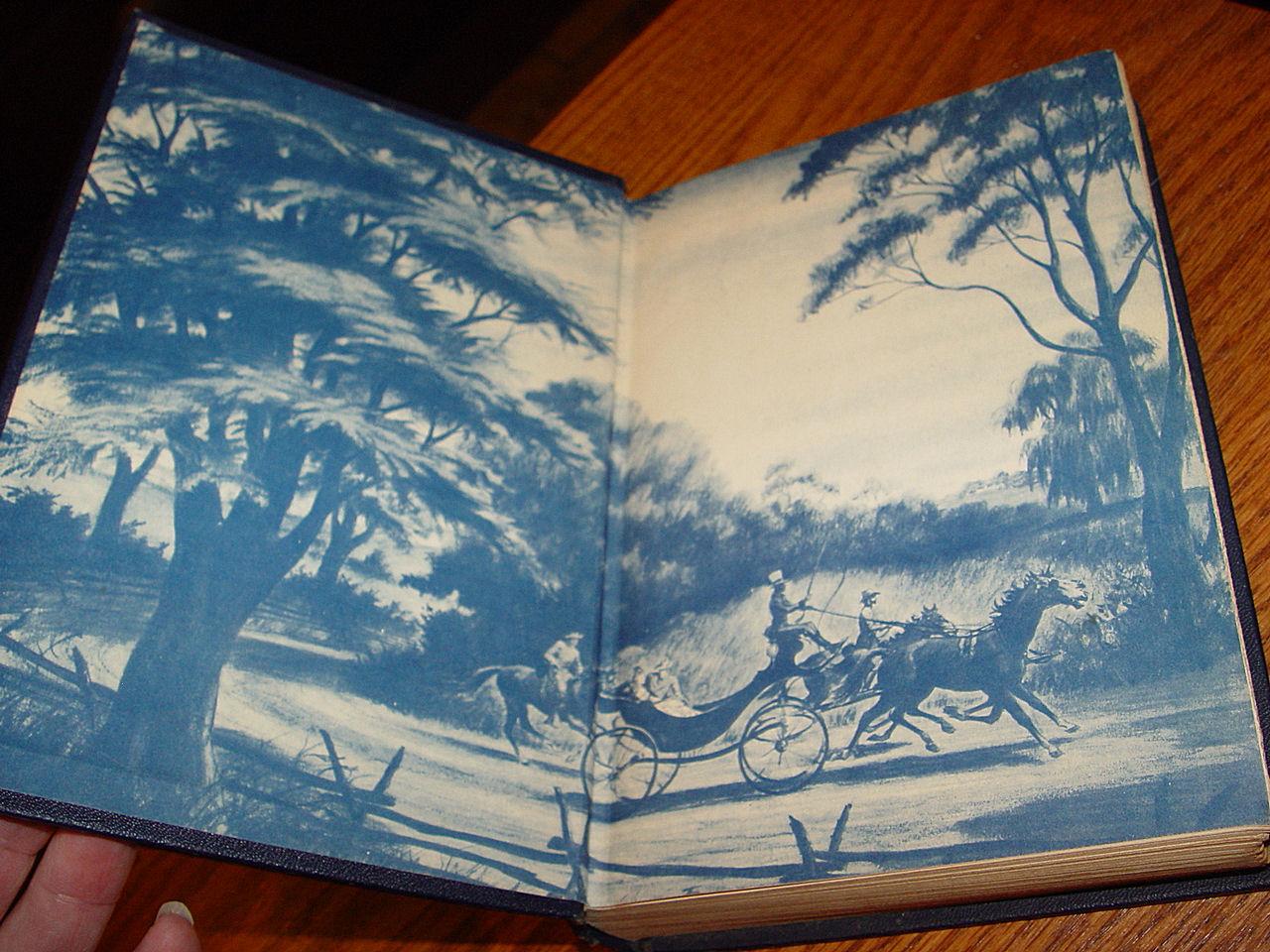 In A Dark                                                 Garden, by Frank                                                 Slaughter, 1946, Civil                                                 War Romance, Doubleday