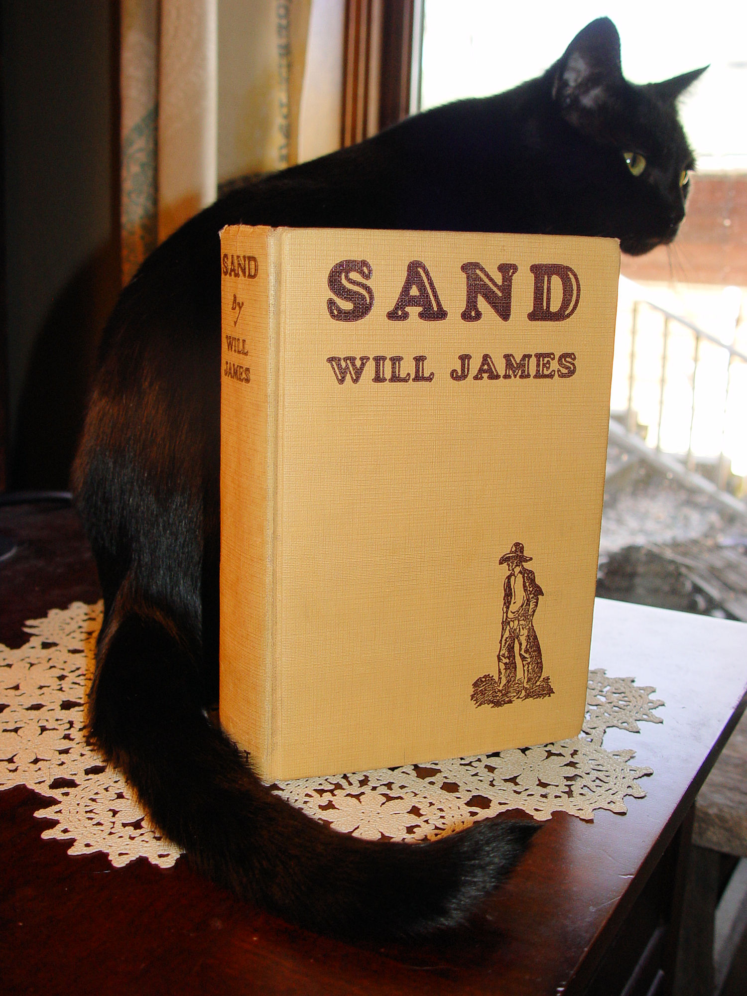 Sand by Will James, New                                         York: A. L. Burt Co. 1929 ~                                         First Edition